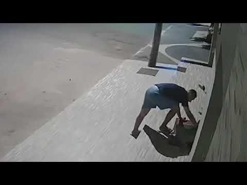 Mies antaa kulkukoiralle peiton