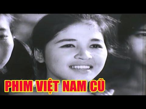 Những Ngôi Sao Nhỏ (Phim Việt Nam)