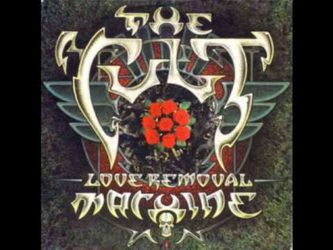 The Cult Wolf Child's Blues