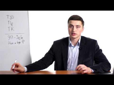 Официальное трудоустройство - как проверить работодателя?