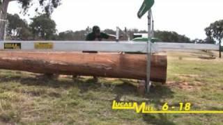 LUCAS MILL - Circular Swing-Blade Models