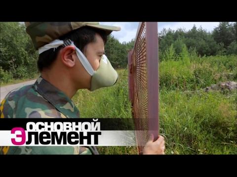 Зверская зона Чернобыля   Основной элемент