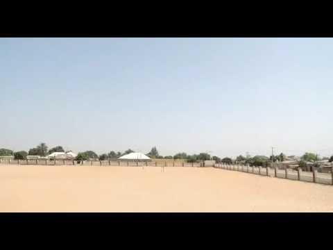 Classiq kawai official video ft dan.alle