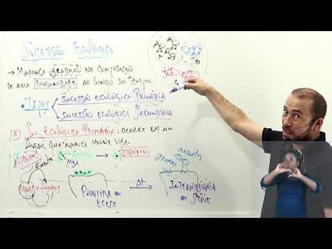 Aula 07 | Sucessão ecológica - Parte 02 de 03 - Biologia