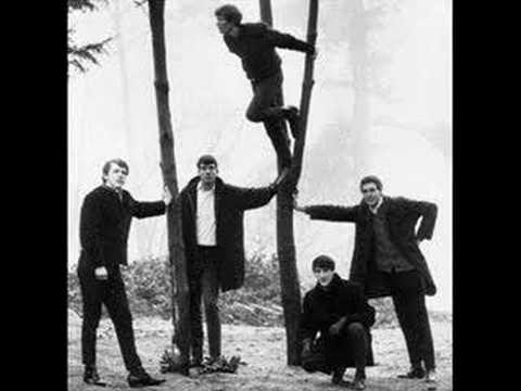 Have Love Will Travel (1965) (Song) by The Sonics