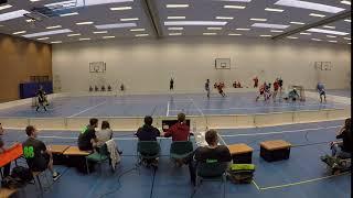 Tor 1:1 Michal Hronsky FBC Heidelberg vs Sportvg Feuerbach