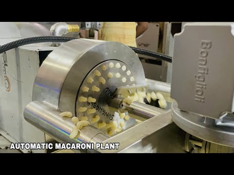 Penne Pasta Making Machine