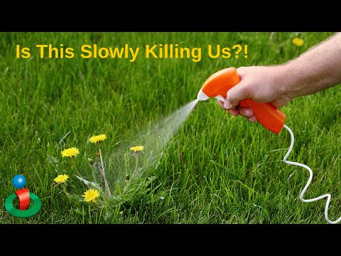 This Herbicide Could Be Slowly Killing Us AND Causing This Condition!