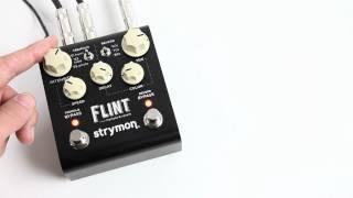 Strymon Flint Video