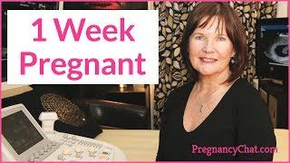 """1 Week Pregnant"" by PregnancyChat.com @PregChat"