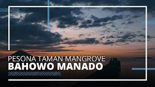 Menikmati Wisata di Mangrove Park, Bisa Melihat Keindahan Bunaken, Siladen, Nain dan Manado Tua