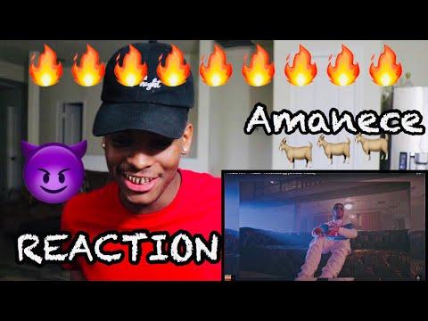 ANUEL AA | HAZE - AMANECE [OFFICIAL VIDEO] -REACTION/REACCION