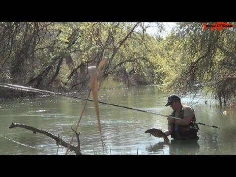 Le relazioni di pescare in Yaroslavl