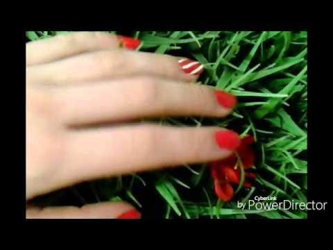 Moumi± du microorganisme végétal des ongles