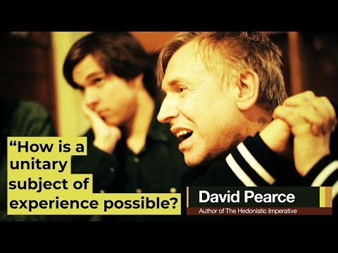 David Pearce - Unitary Subjects of Experience & the Binding Problem of Consciousness