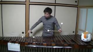 創聖のアクエリオンOPをマリンバで演奏してみたマリンバ