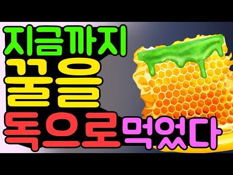, title : '꿀을 독으로 먹었다니! 건강하게 꿀을 먹는법 및 꿀의 효능, 가짜꿀 진짜꿀 꿀 구별방법 진짜일까! 꿀과 같이 먹으면 좋은 음식