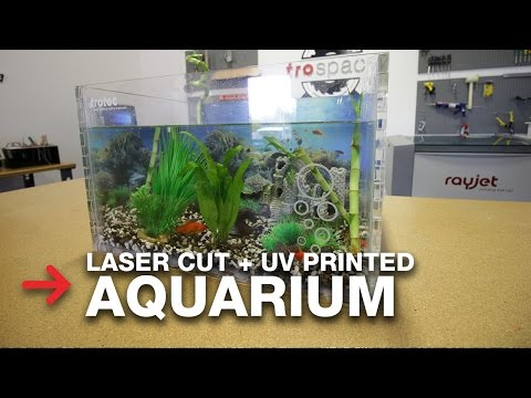 Aquarium from 426UF and Trotec Laser