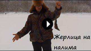 Как сделать жерлицы на налима зимой