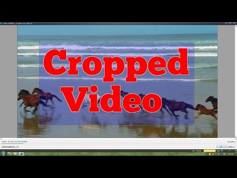 How to Crop Edges of Video for FREE