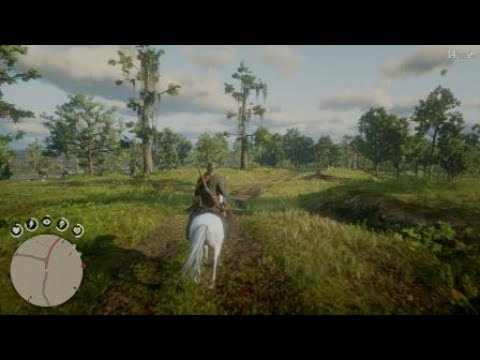 Red Dead Redemption 2- Weird burning Horse Glitch