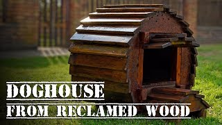 AMAZING Dog House Made Only With RECLAIMED WOOD ; Old Pallet And Cable Spool Wheel