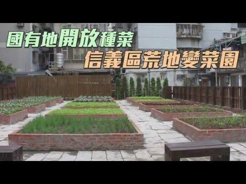 國有地開放種菜 信義區荒地變菜園   台灣蘋果日報