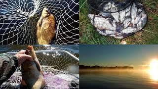 Рыбалка в июне на озере вселуг