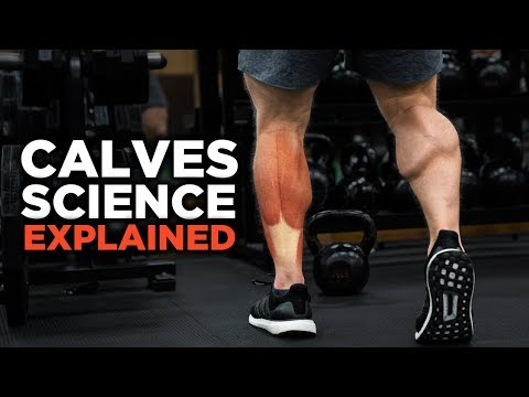 , title : 'The Most Scientific Way to Train CALVES (Science Explained)