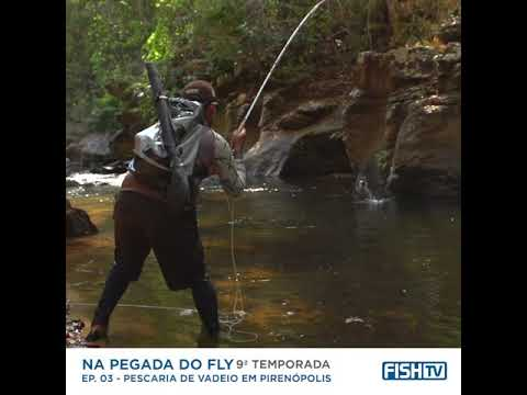 PIRAPITINGA DO SUL on the Fly