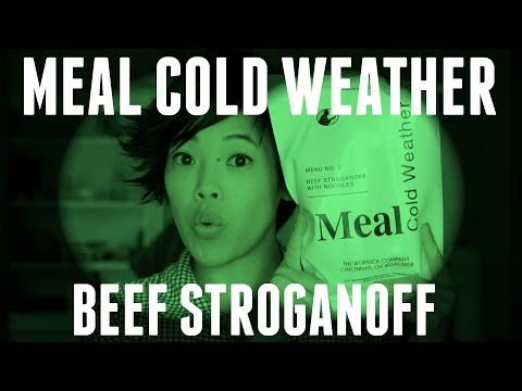 MRE Cold Weather Beef Stroganoff – a US MCW Tasting