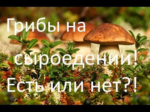 Есть ли грибы на сыроедении