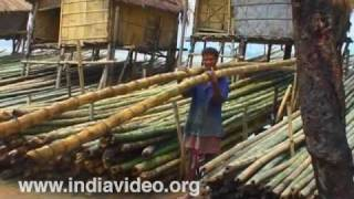 Bamboo, the treasure of Assam