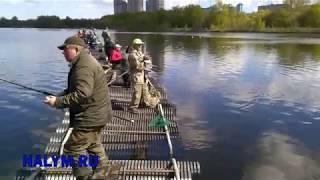 Ловля на москва реке боковым кивком