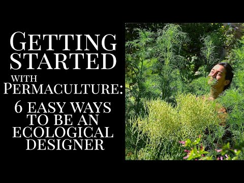 Permaculture for Beginners
