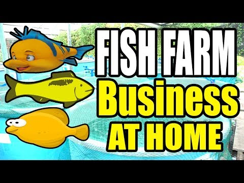 , title : 'How To Start A Fish Farming Business At Home