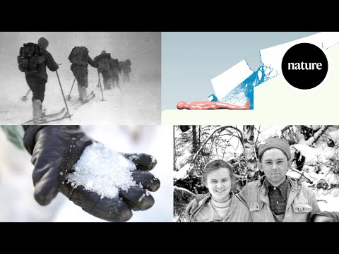 Explaining the Icy Mystery of the Dyatlov Pass
