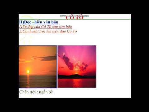 NV6 Cô Trang bài Cô Tô