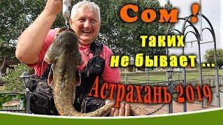 Рыболовная база астраханской области фортуна