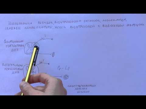 Екатеринбург простата лечение