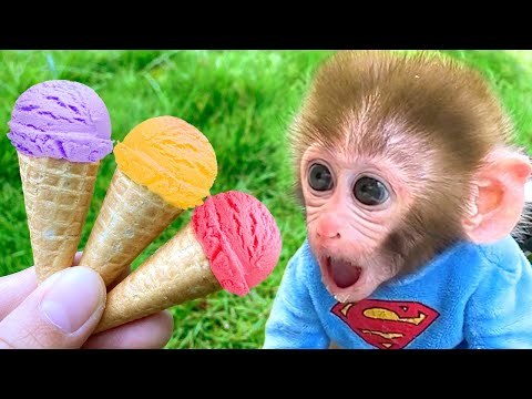 Baby monkey Bon Bon Eats Ice Cream And Swims With Puppy And Duckling