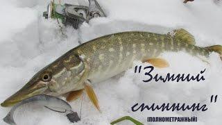 Ловля щуки зимой на незамерзающих реках