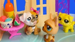 LPS PARTY PUPS - Flashback Mommies Part 51 Littlest Pet Shop Series Video Movie LPS Mom Babies