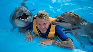 Vlogg | Badar Med Delfiner