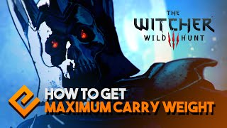 The Witcher 3 - Zerrikanian Saddlebags Location - Most Carry Weight (+100)