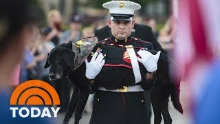 Watch A Marine Give His Beloved Dying Dog A Touching Final Ride | TODAY