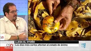 Federico Casado Reina como Psicólogo en Canal Sur Noticias - 22/09/2017