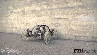 VertiGo - A Wall-Climbing Robot Including Ground-Wall Transition