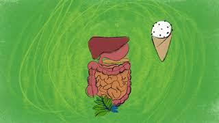 食物及飲料中的益生菌