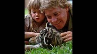 Two Versions of Crocodile Rock inc a tribute to Steve Irwin